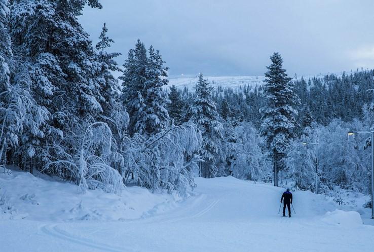 Saariselkä   Lapland