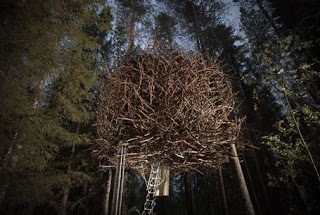 The Birds Nest treehouse - Swedish eccentricity at its best!