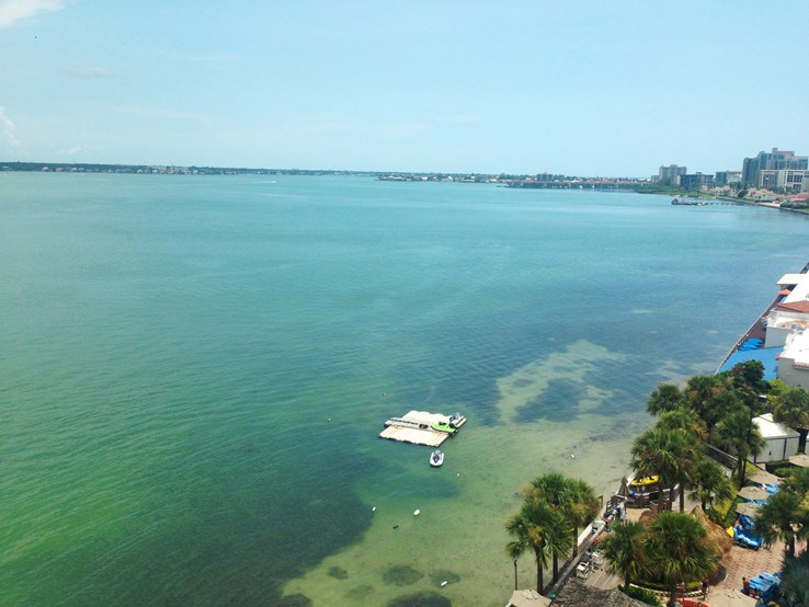 View from Marriott Suites on Sand Key over Clearwater Beach