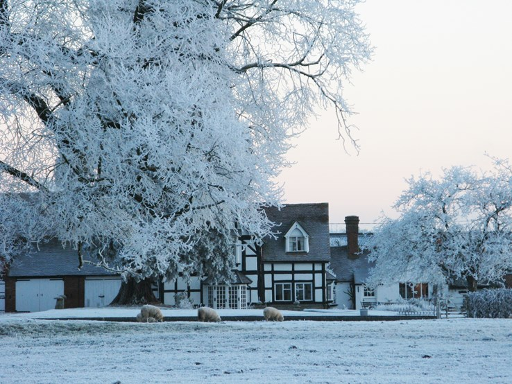 English Countryside in Winter