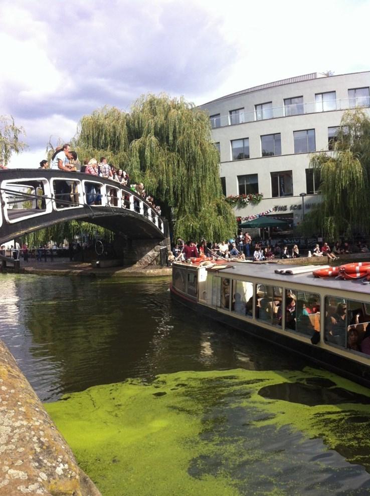 A bit of fresh air at Camden Markets
