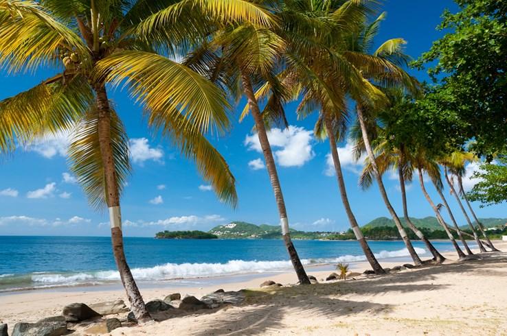 Choc Bay | St Lucia
