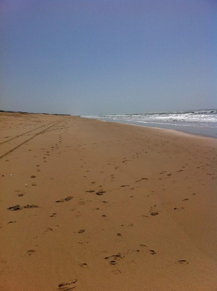 Beach at Vale de Lobo