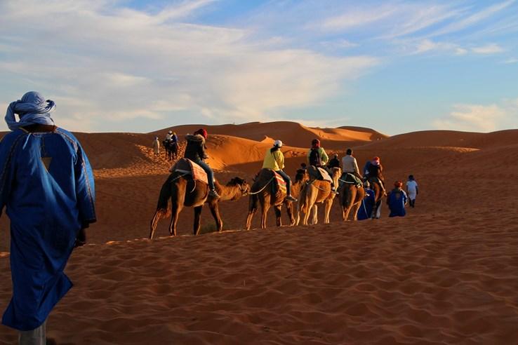 Arabian Safari Adventure
