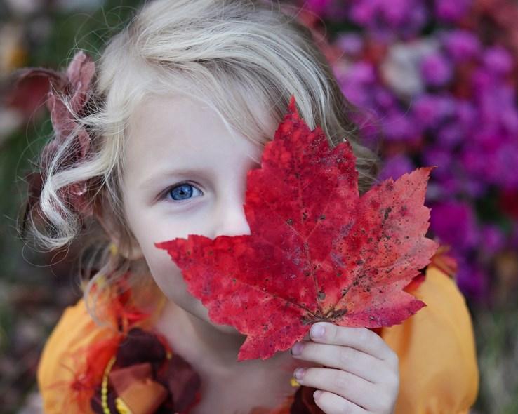 Autumn Family Breaks